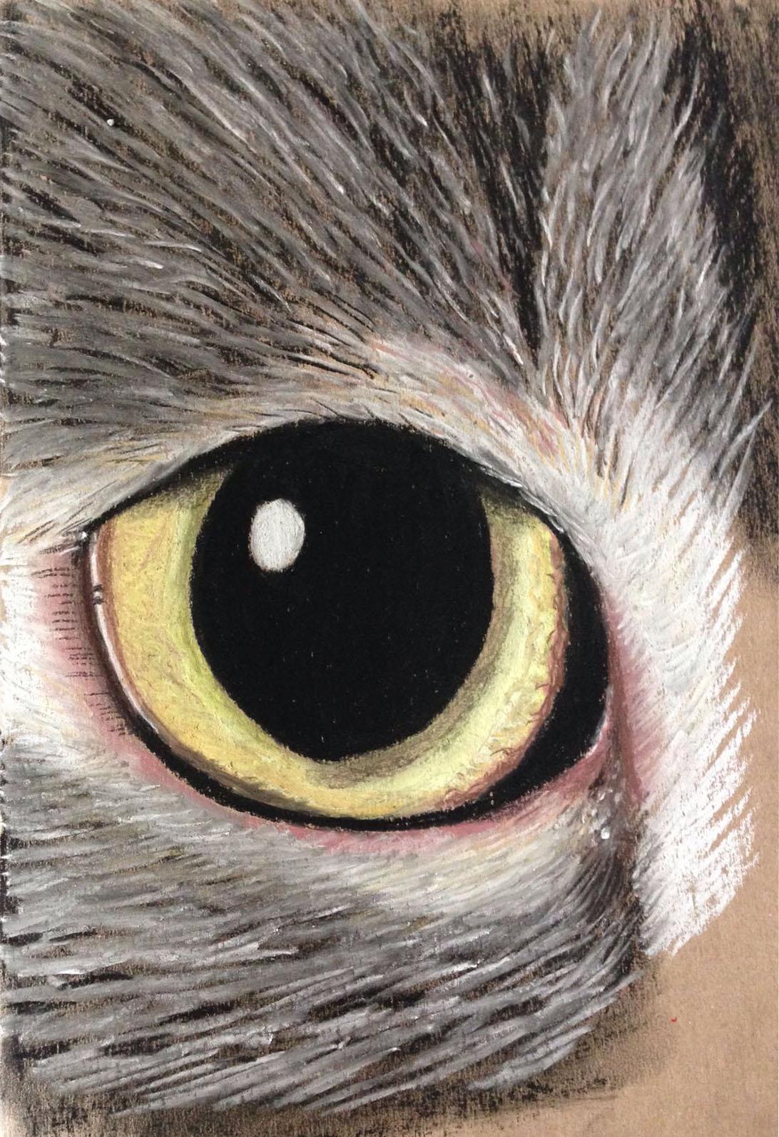 detail kattenoog met pastelkrijt door linda vd bergh