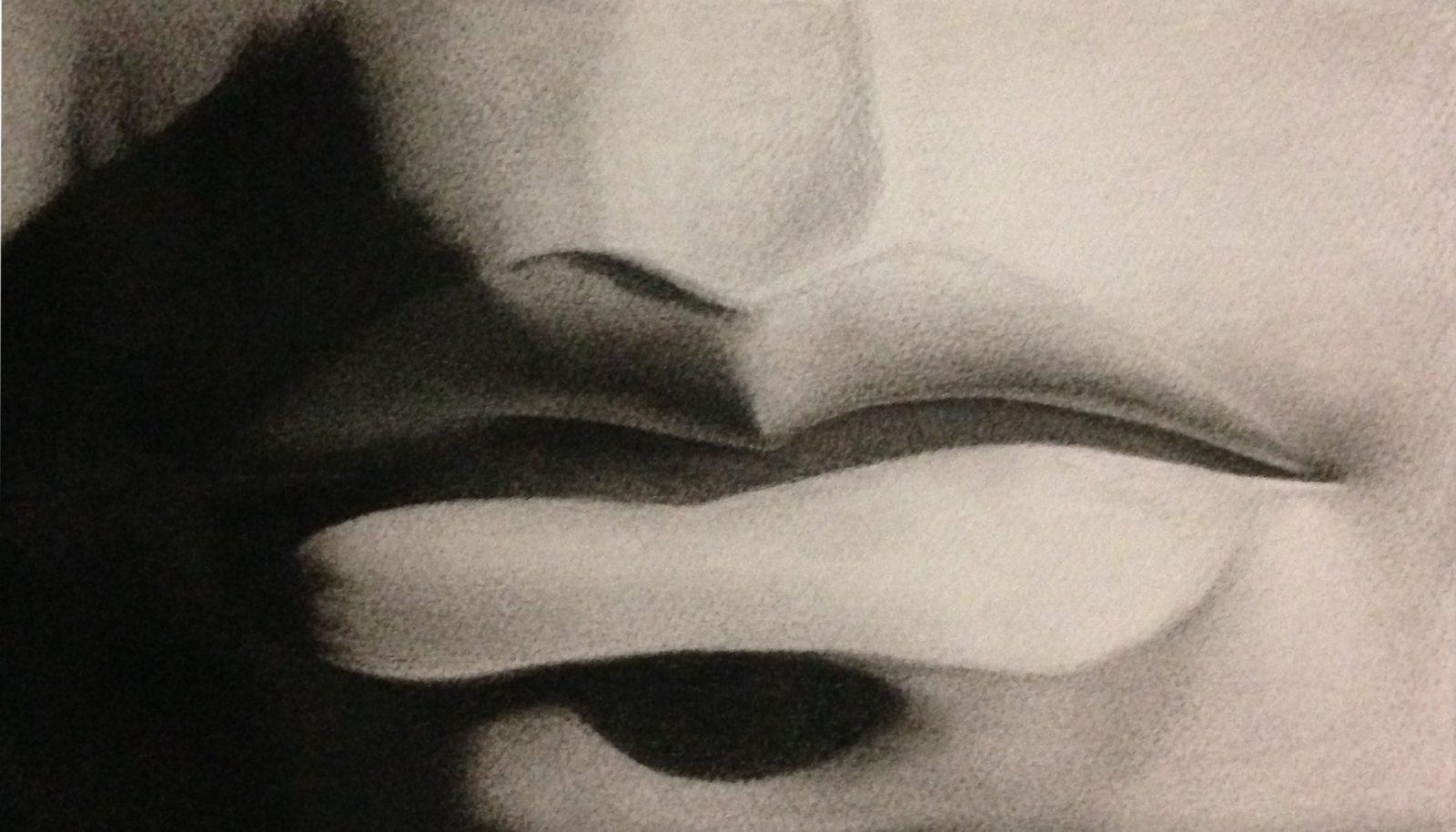 houtskool tekening van de mond door linda vd bergh