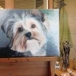 portret van hondje geschilderd door linda vd bergh