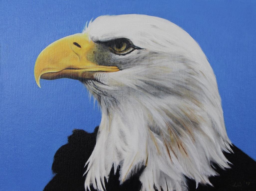 Adelaarshoofd geschilderd op paneel met olieverf